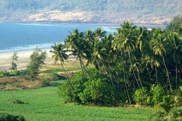 Beautiful Kerala Scene.jpg-2