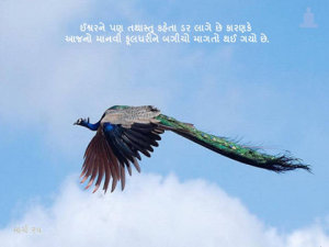 Peacock with Quote- 3