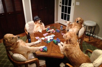 Dogs-1