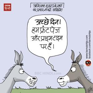 donkey-politics